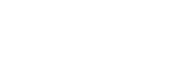 Perini Management Services, Inc.
